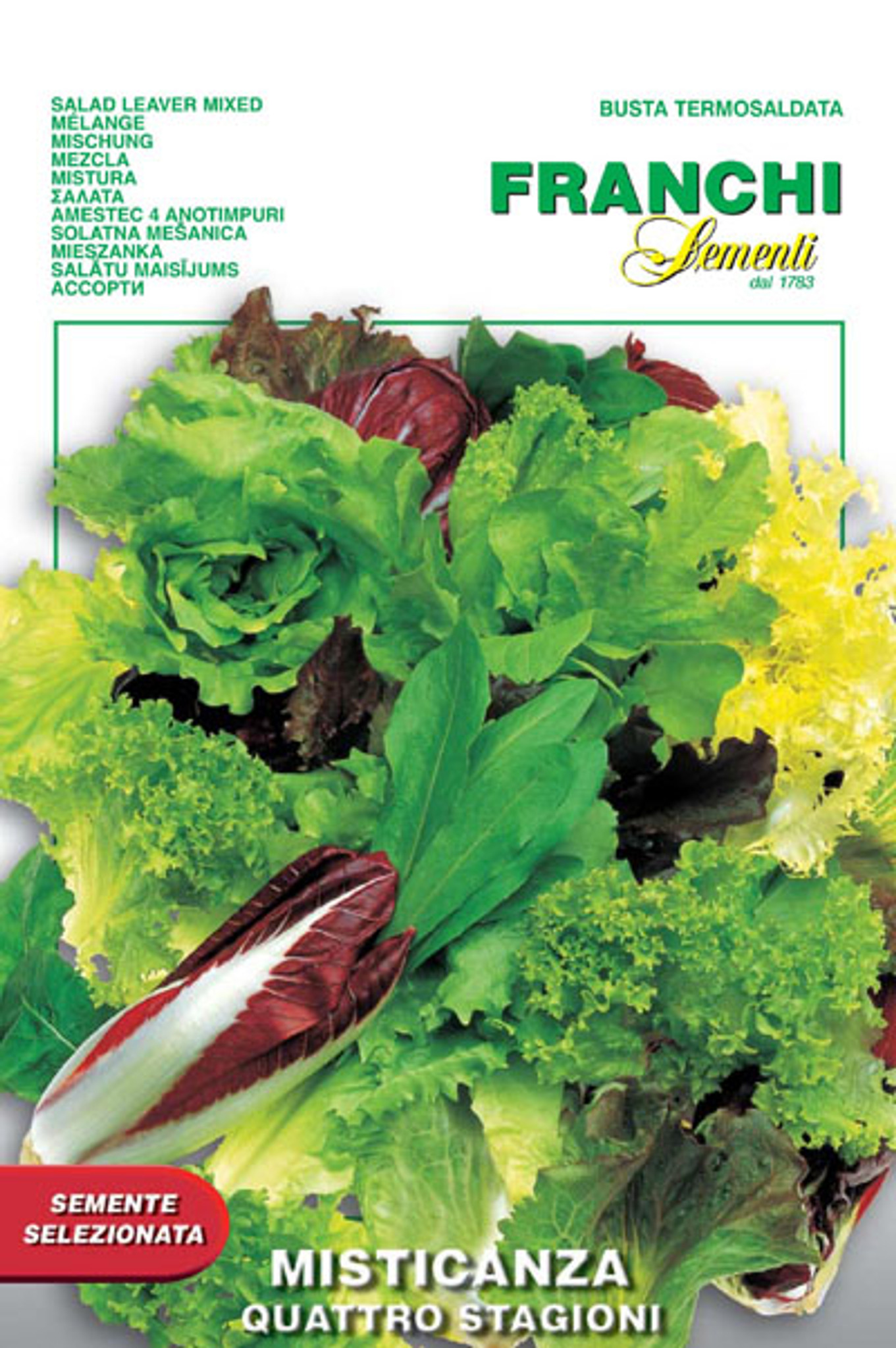 Quality Italian seeds Misticanza melange of tender lettuce cut and grow mesclun