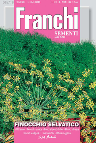 Wild Fennel (Flowering) / Finocchio Selvatico (62-18)