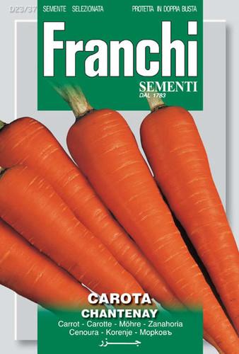 Carrot Chantenay (23-37)