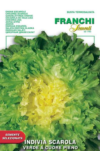 Escarole Verde a Cuore Pieno (121-3)