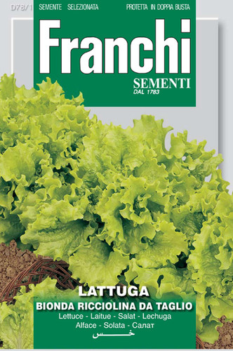 Lettuce Bionda Ricciolina (78-1)