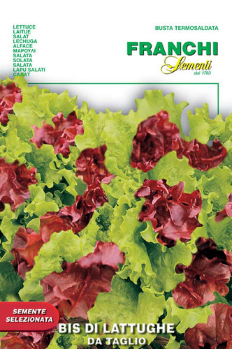Two varieties of red and green frilly lettuce.