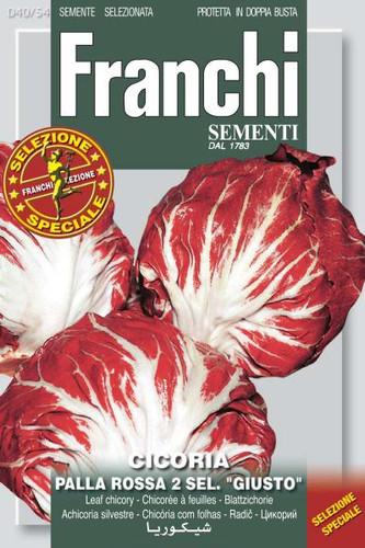"""Chicory Palla Rossa 2 Sel. """"Giusto"""" (40-54)"""