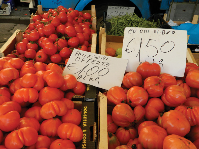 How to choose tomato varieties