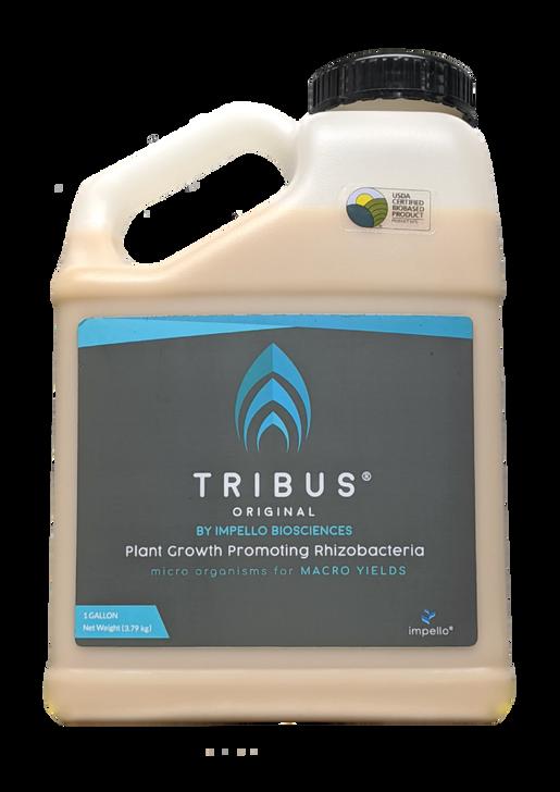 Tribus - Original 1 gallon