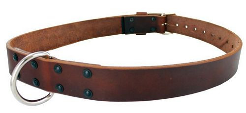Gould & Goodrich Model 189 Restraining Belt