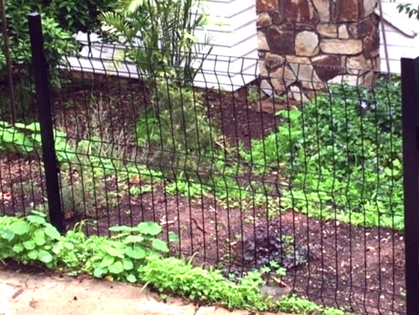 BlackWire Galvanized Fence Panels are great for dog fencing.