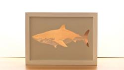 Shark Copper Print