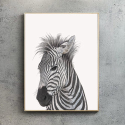 Zebra by Ben Rothery