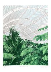 Palm House Interior