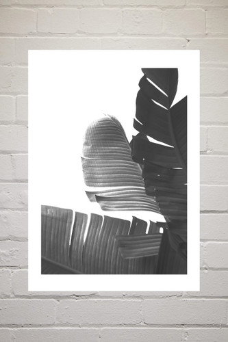 Noir Gallery Wall Set