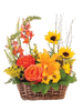 Sunny Daze Basket