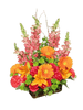 Ma & Pa's Salsa Picante:  arrangement of hot pink roses, bold orange gerbera, and tall peach snapdragons in a woven birch basket