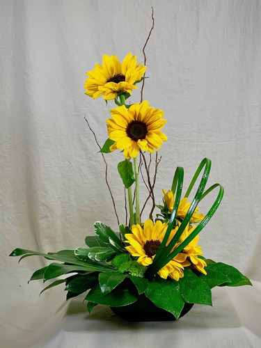 Sunflower Zen:  linear arrangement of sunflowers in a black design bowl