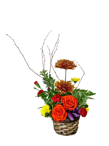 Autumn Promenade:  woodland-style arrangement of bronze mums, orange, roses, and birch branches, in a dark woven basket
