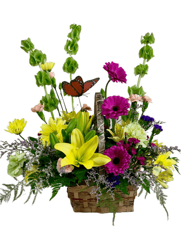 Flutter By - arrangement of yellow lilies, purple gerbera, and green Bells of Ireland, accented with a butterfly, and presented in a birch basket.