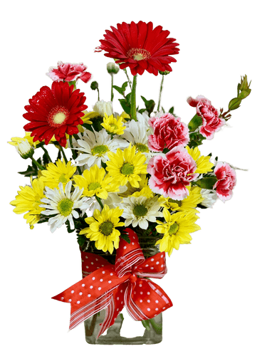 Dashing Daisies - arrangement of colorful field daisies, gerbera, and mini-carnations in a clear glass vase, accented with a fabric bow