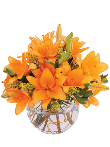 Vincent's Mango Sorbet - arrangement of orange lilies and yellow solidago in a clear glass bubble bowl
