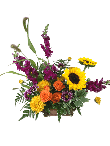 September Sunrise:  arrangement of purple snapdragons, yellow sunflowers, orange spray roses, and cheerful field mums, with seasonal greens and grasses, in a dark woven rectangular basket