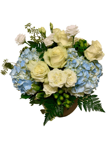 Gentle Remembrance:  arrangement of blue hydrangea with white roses and spray roses and green hypericum, presented in a modern stoneware bowl.