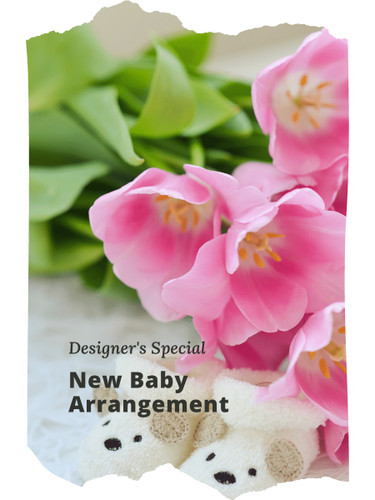 The Designer's Special Baby Arrangement includes the florist's choice of fresh blooms in a pastel color palette, accented with seasonal greens, and beautifully presented for the family.