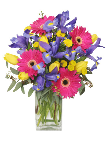 Mill Race Blossoms - arrangement of pink gerbera daisies, purple iris, yellow tulips, and yellow button poms, in a clear glass vase
