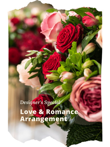Designer's Special Love & Romance Arrangement includes the florist's choice of beautiful blooms in a romantic color palette, accented with seasonal greens, and beautifully presented for the gift recipient.
