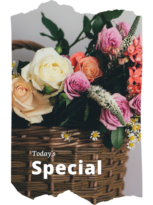 Today's Special:  designer's choice arrangement using the freshest flowers in our case, available at a special value for our online shoppers.