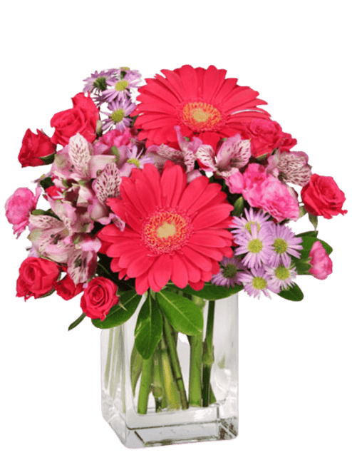 Zoom Room: Hot pink gerbera and spray roses with lavender accents in a rectangular glass vase