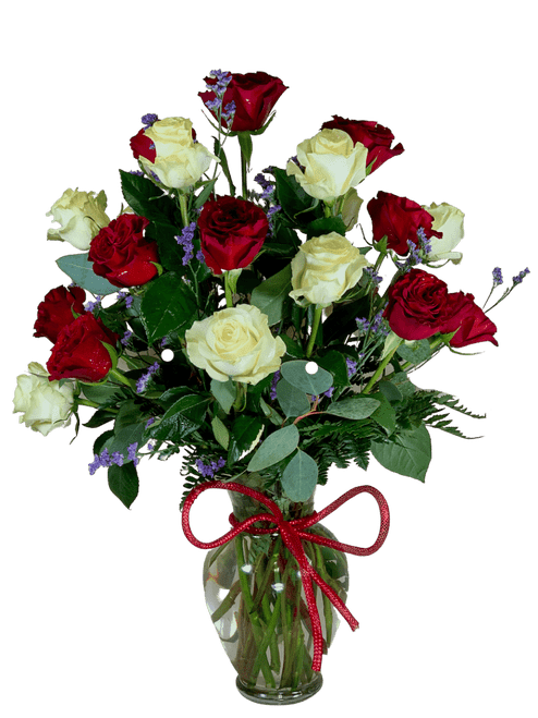 Double Diamonds - vase arrangement of two dozen premium roses in red and white, with a red bow