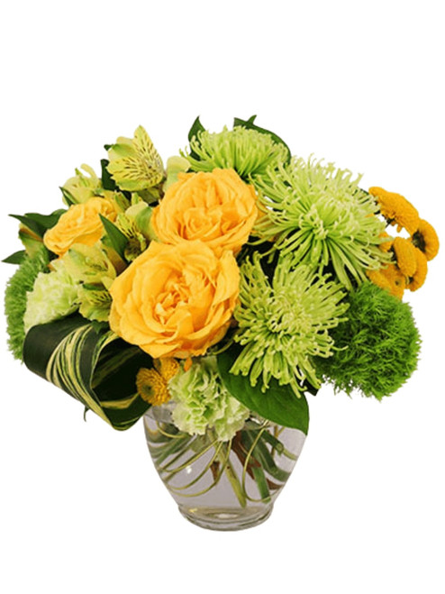 Lemons and Limes:  arrangement of yellow roses and green spider mums with dianthus, alstromeria, and seasonal greens,  in a ginger jar vase