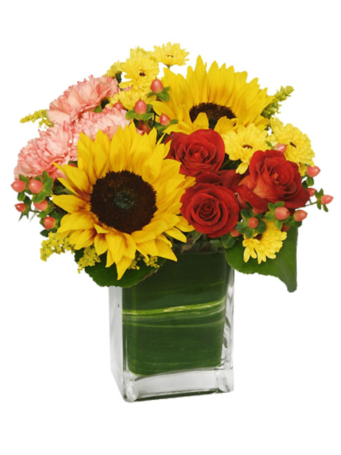Sunflower Medley - a cheerful mix of bright blooms - yellow sunflowers, red roses, peach carnations, and more - arranged in a leaf-lined cube of clear glass.