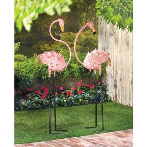 Accent Plus Flamboyant Flamingo Stakes