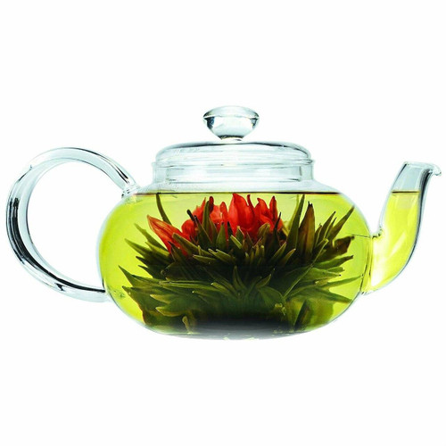 FastFurnishings Stove-top Safe Brosilicate Glass Teapot 22 Oz with Infuser