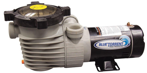Blue Torrent Blue Torrent Hurricane Dual Port Above Ground Pool Pump