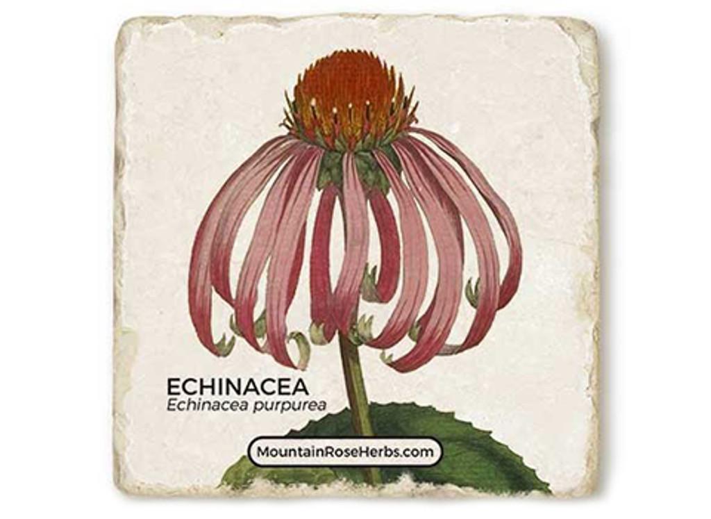 Echinacea Stone Coaster
