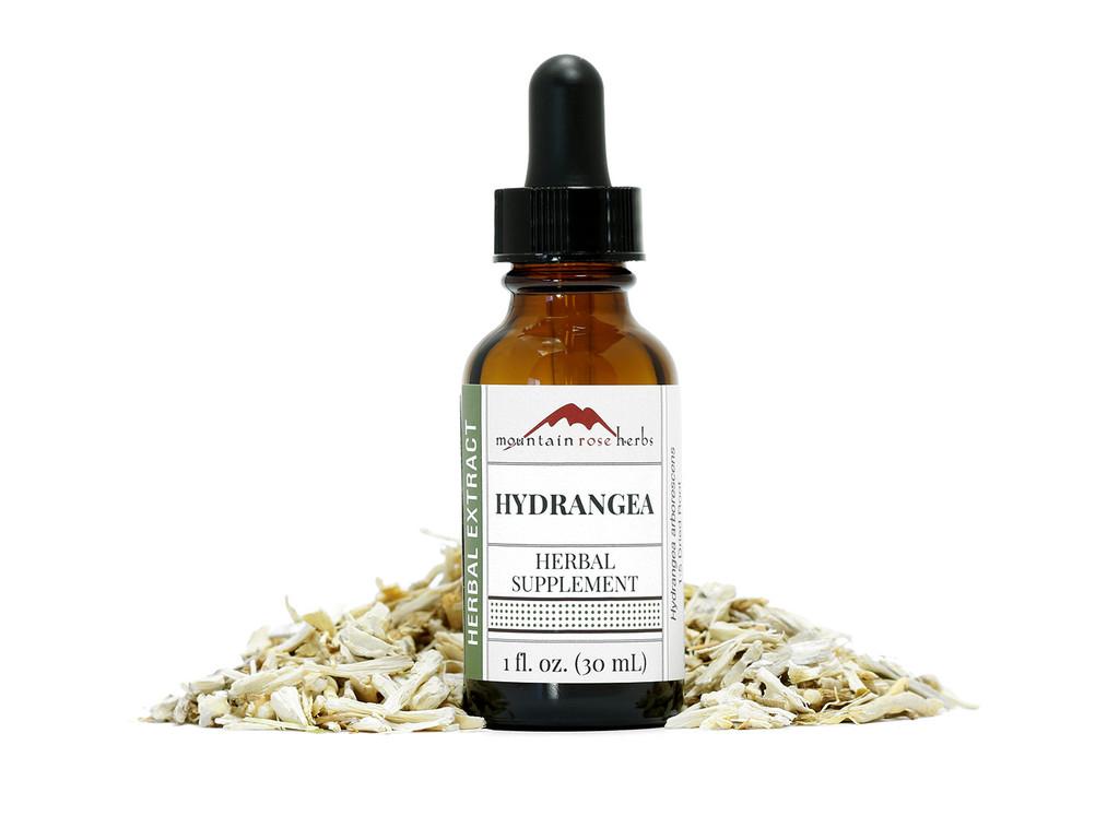 Hydrangea Extract