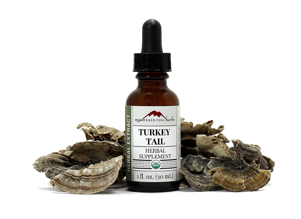 Turkey Tail Extract
