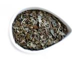 Organic Memory Zest Tea