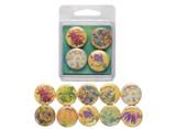 Botanical Magnet Set