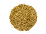 Organic Alfalfa Sprouting Seed