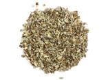 Organic Echinacea angustifolia Root