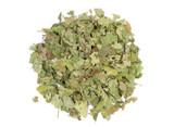 Organic Witch Hazel Leaf