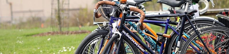 bikes-copy.jpg