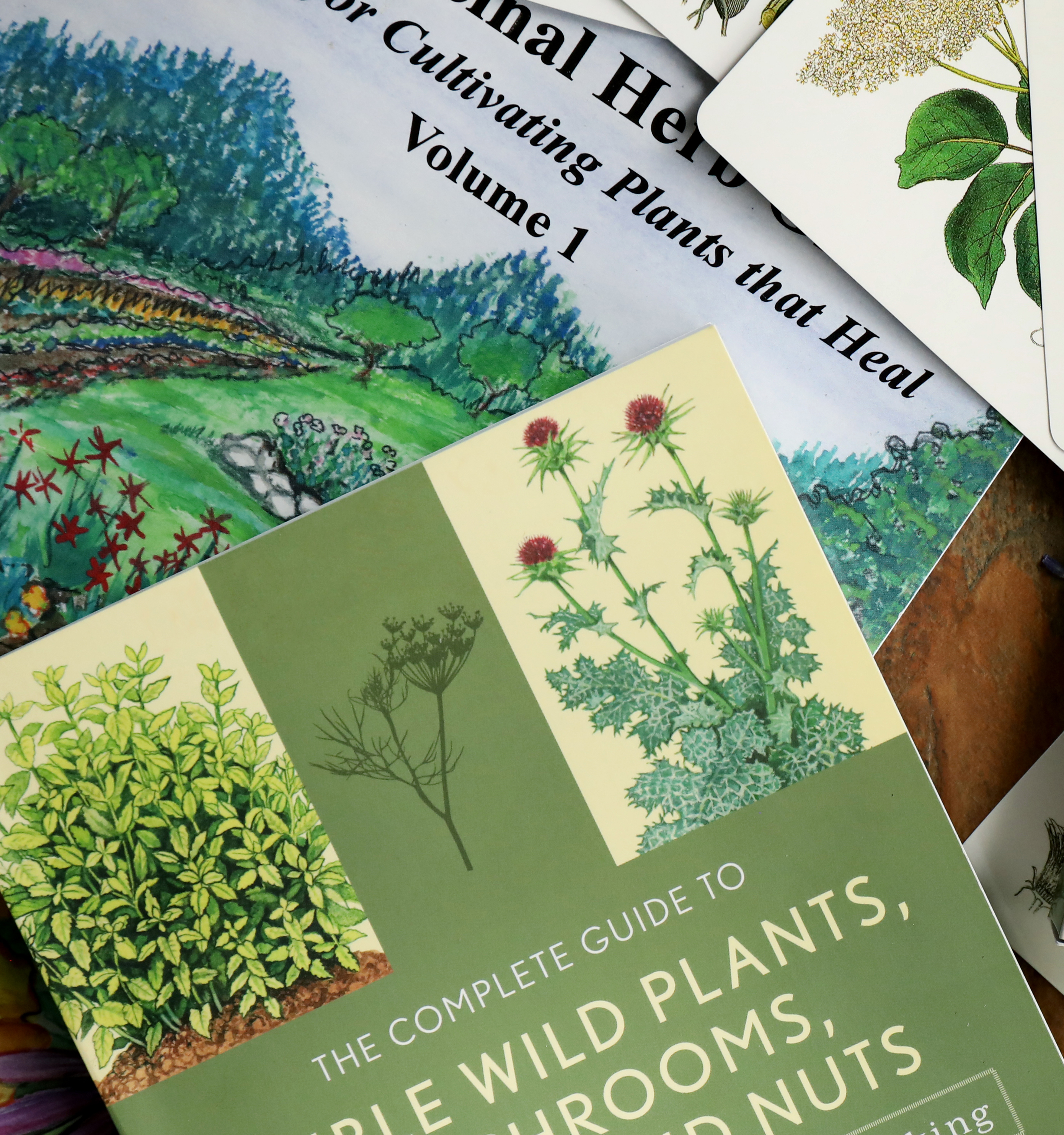 Plant Guides & Gardening Books