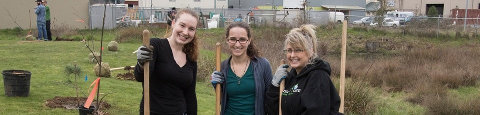 sustainability-employee-tree-planting-1.jpg
