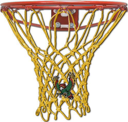 Freestate High School Gold Basketball Net