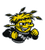 Wichita State Shockers Patch
