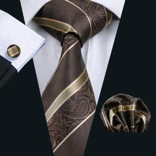 Brown with gold stripe and  brown paisley pattern necktie set.