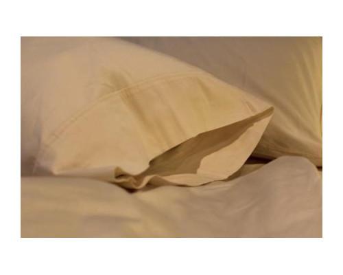 Sleep and Beyond Organic Pillow Case Pair|sleep and beyond, pillow case, organic, queen, king